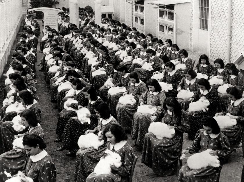 Operaie alla pettinatura dei conigli, Angora Luisa Spagnoli, 1940-kzbE-U43060878243046nSD-1224x916@Corriere-Web-Sezioni.jpg